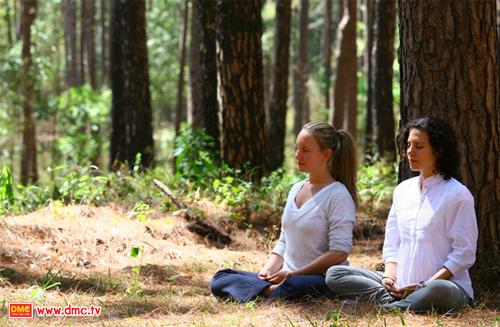 The Middle Way Meditation Program