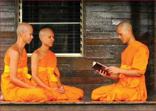 Dhamma, is the food for the mind
